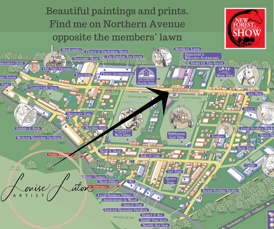 map of new forest show ground