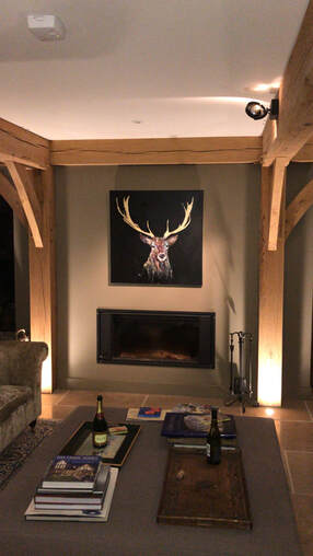 Stag painting in situ