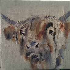 Underpainting cow Louise Luton