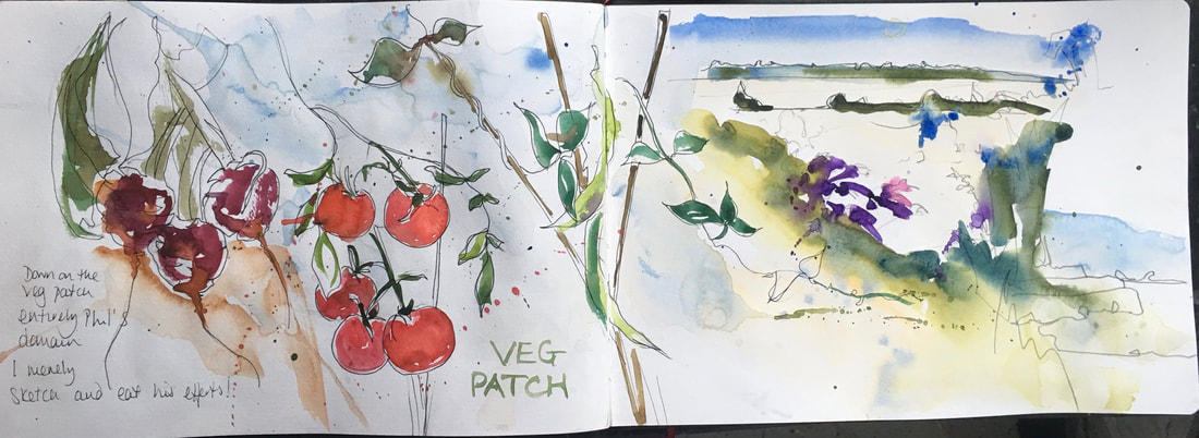 My sketchbook on the vegetable patch